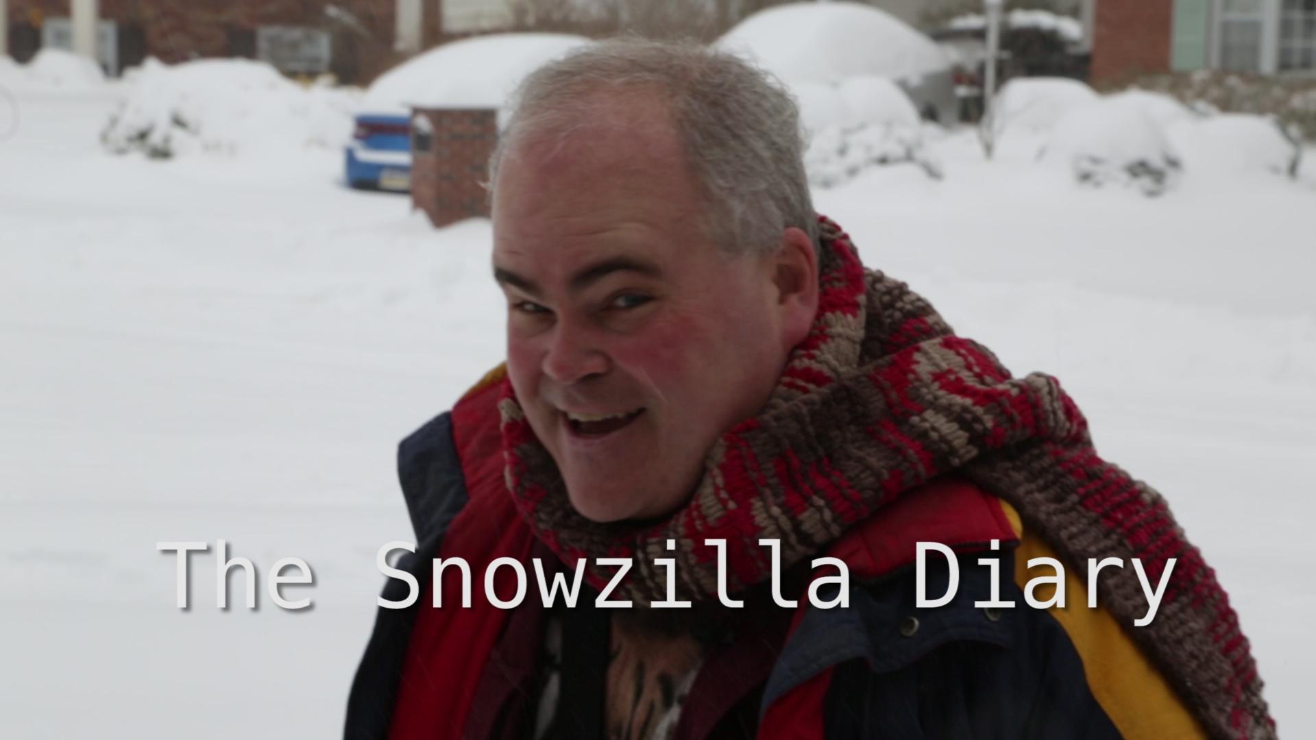 Snowzilla Diary
